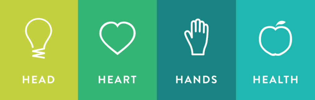 Head, Heart, Hands, Health