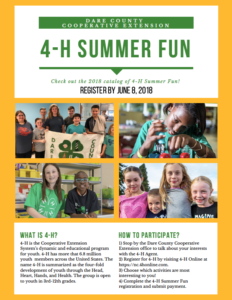 Cover photo for Dare County 4-H Summer Fun!