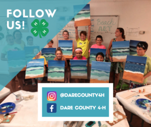 Cover photo for Follow Dare County 4-H on Social Media!
