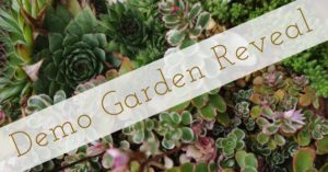 Cover photo for OBX Living Series | Demo Garden Reveal