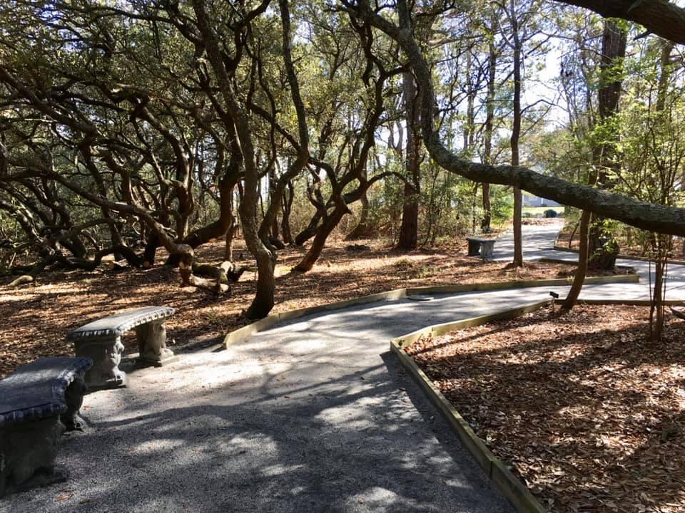 pathways in the garden