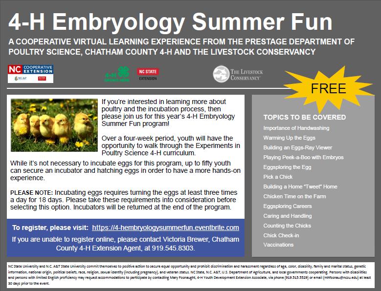 4-H Embryology Summer Fun flyer