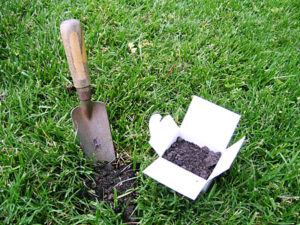 Cover photo for Soil Testing for Lawns and Gardens