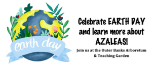 Cover photo for Celebrate Earth Day at the Outer Banks Arboretum