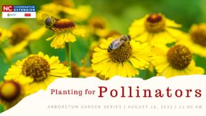 planting for pollinators